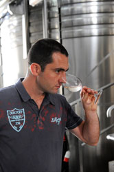 Wine tasting by Mathieu, the winemaker of Vignerons de Tutiac