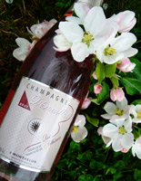 Champagne Dérouillat founded in 1929:Pink Champagne Arthémia