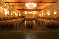 A huge barrel cellar