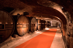 Underground Cave for wine tourism