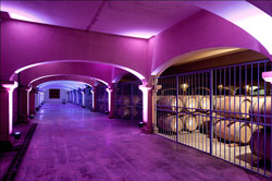 The barrel cellar of l'Hospitalet